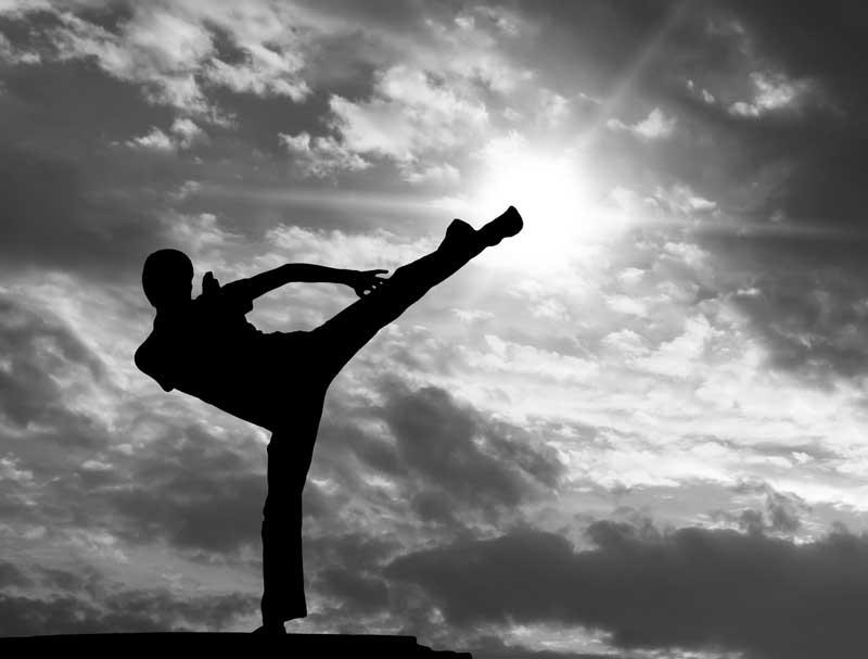 Martial Arts Barcelona Gym.